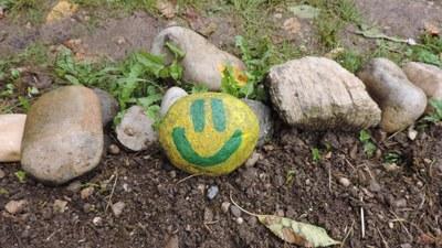 activité peinture des pierres